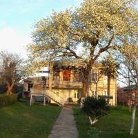 Φωτογραφίες: Guesthouse Skvami-სკვამი, Zugdidi