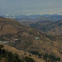 Fotos del hotel: Exotic villa, Shimla
