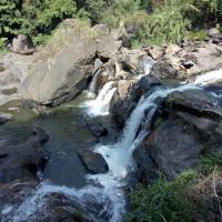 Fotos del hotel: Munnar Tent camping and destination makers, Munnar