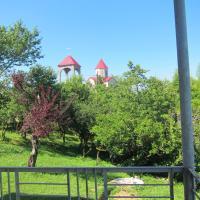 Φωτογραφίες: дом у Святой Ирины, Tsqaltsminda
