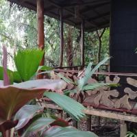 Hotelfoto's: El Perezoso Lodge, Rincón