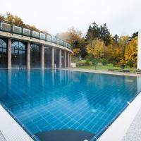 Hotel Pictures: Les Violettes Hotel & Spa, Jungholtz