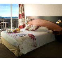 Hotel Pictures: Hôtel Du Baou, La Gaude