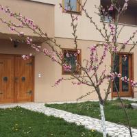 Zdjęcia hotelu: Apartments Layla, Visoko