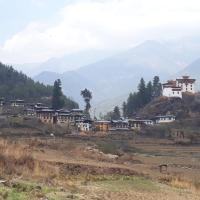 Hotelbilleder: Chimi Homestay, Sangkari
