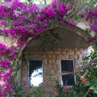 Fotos de l'hotel: Old Souk Guest House, Jounieh