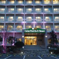 Fotografie hotelů: Caviar Park Hotel & Resort, Gapyeong