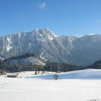 Hotel Pictures: Chalet Ermina Bed & Breakfast, Leysin