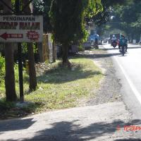Φωτογραφίες: Penginapan Sedap Malam, Lovina