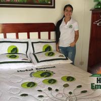 Hotel Pictures: Hotel Emanuel, Agua Buena