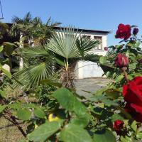 Hotellikuvia: Badri, Tsalenjikha