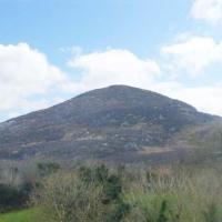 酒店图片: Raven's Rock Farm, Ballisodare, Cooney