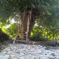 Hotellikuvia: Guest House Bella, Areni