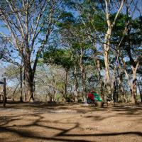 Hotel Pictures: Camping Howler Monkey Farm, Playa Flamingo
