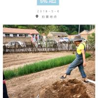Hotel Pictures: Leshan Country Beauty Hostel, Xinglong