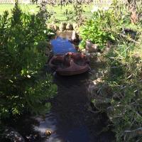 Hotelbilleder: Roo Lagoon Homestead, Kingscote
