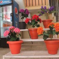 Hotellbilder: Green Hill View Rooms In Bhagsu, Dharamshala