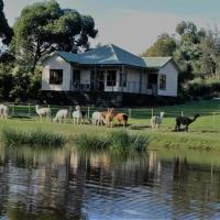 Hotellbilder: Raynella Alpaca Farmstay, Gruyere