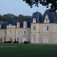 Hotel Pictures: Chateau de Jalnay, Glénouze