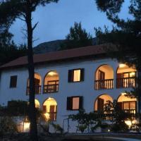 Fotos de l'hotel: Apartment Ivan Dolac 11308a, Jelsa