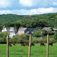 Hotelbilder: La Grange de David, Hamoir