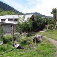 Hotellbilder: qetevani, Borjomi