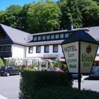 Hotelbilleder: Hotel Zum grünen Wald, Villmar