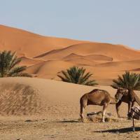 Fotos de l'hotel: Best Morocco Tours Campsite, Merzouga