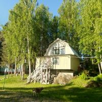 Hotel Pictures: Baza Otdykha Tsarevichi, Petrozavodsk