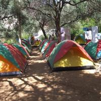 Фотографии отеля: Southern Camp Albania, Qeparo