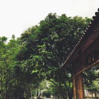 ホテル写真: Yangshuo Zhiliao Guesthouse, 陽朔