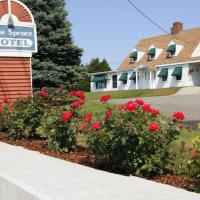Blue Spruce Motel & Townhouses