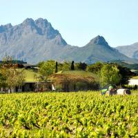 Zdjęcia hotelu: Hoopenburg Guesthouse, Stellenbosch
