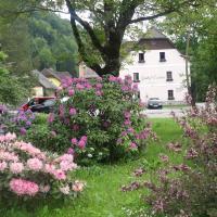 Hotel Pictures: Gasthof Eschau, Palfau