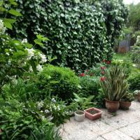 Φωτογραφίες: Beautiful Garden Guesthouse, Γκόρι