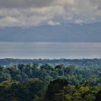 Hotellbilder: Osa Mountain Camping, Dos Brazos