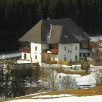 Hotel Pictures: Pension Pein, Vordernberg