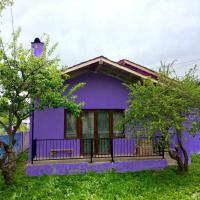 酒店图片: 家庭酒店, Bakuriani