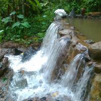 Hotellikuvia: Coorg Jungle Mini Resort with Food & Adventure Activities, Madikeri