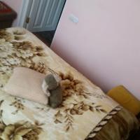 Zdjęcia hotelu: Guesthouse/B&B in Dilijan, Dilijan