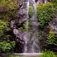 Hotel Pictures: Nimbin waterfall retreat, Nimbin