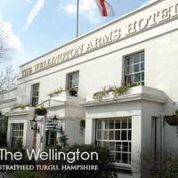 Hotel Pictures: The Wellington Arms Hotel, Hook