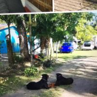 Φωτογραφίες: Meggs property ,Belize District, Burrell Boom