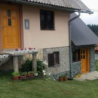 Hotellbilder: Guest House Dobra voda, Sokolac