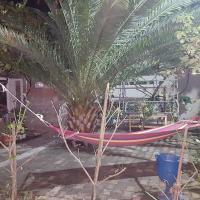 Φωτογραφίες: welcome batumi, Salibauri