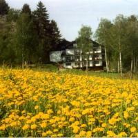 Hotelbilleder: Birkenhof, Wald-Michelbach