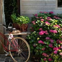 Hotelbilder: Flemish cottage, Oostkamp