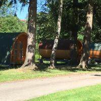 Hotel Pictures: camping le parc, Availles-Limouzine