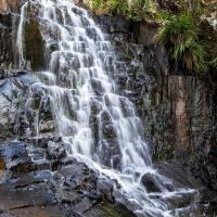 酒店图片: Gypsy Falls Retreat, Lorne