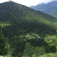 Hotellikuvia: House in Adjara, Tselat'i